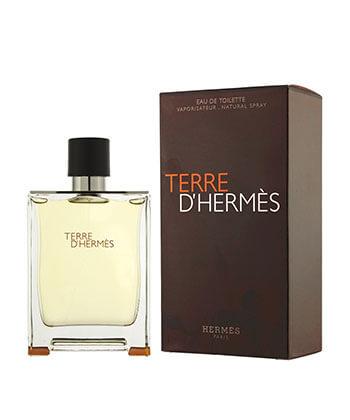 Hermes Terre D'Hermes Edt 100ML-Men